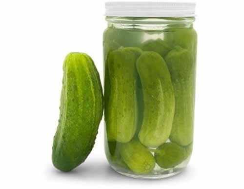 pickle and pickle jar