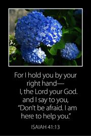 Bible Card 4