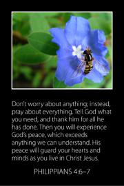 Bible Card 1
