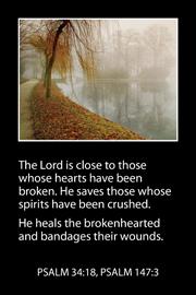 Bible Card 2