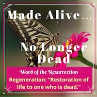 Regeneration-Made-Alive-No-Longer-Dead